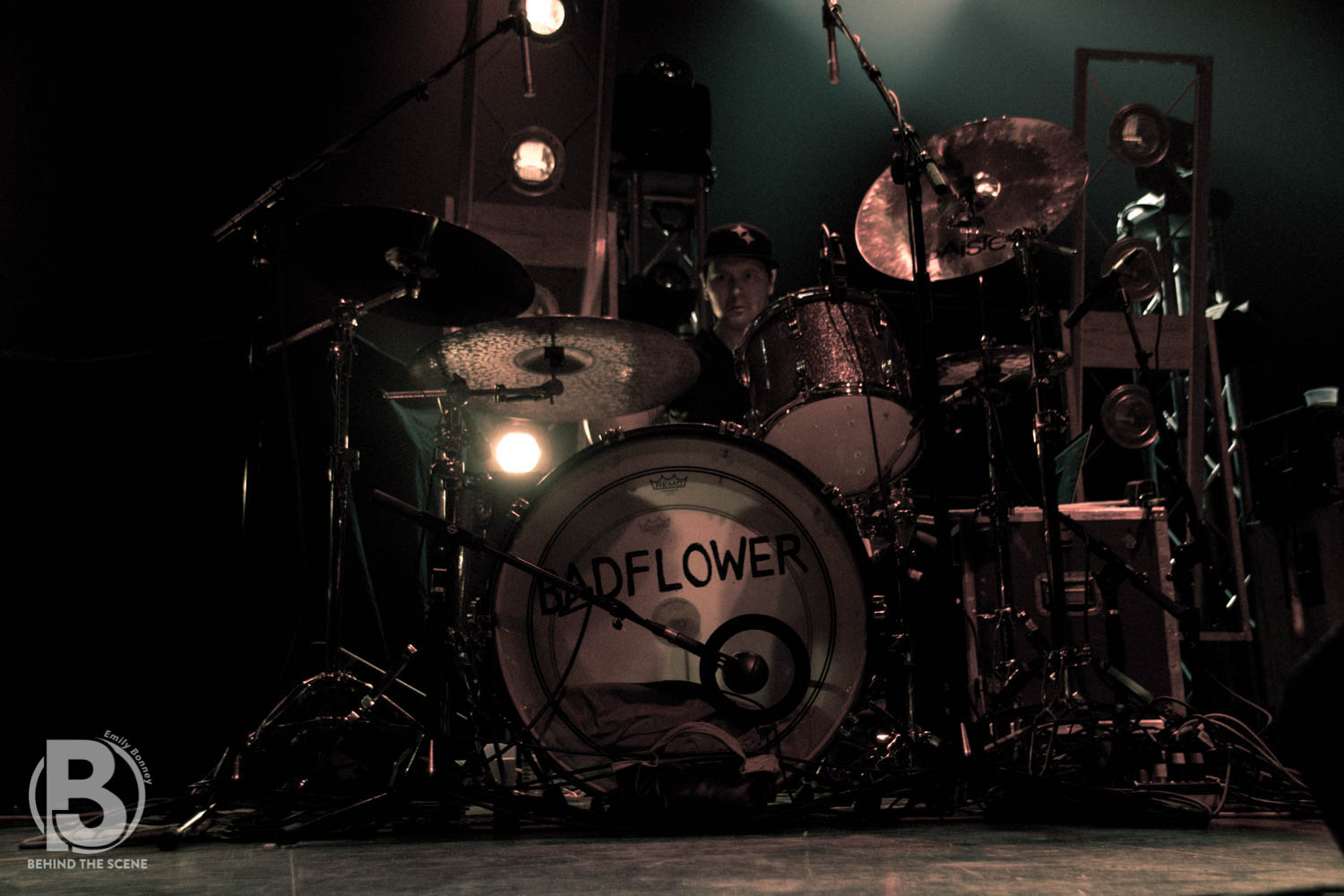 031219 Badflower EB-0218.jpg