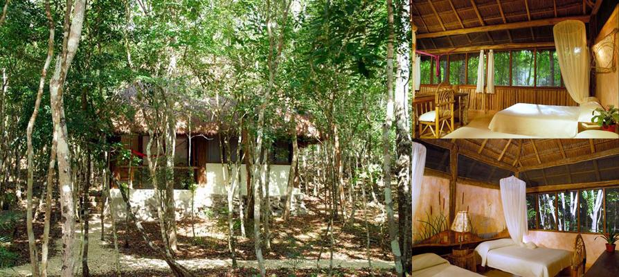a hut at Puerta Calakmul