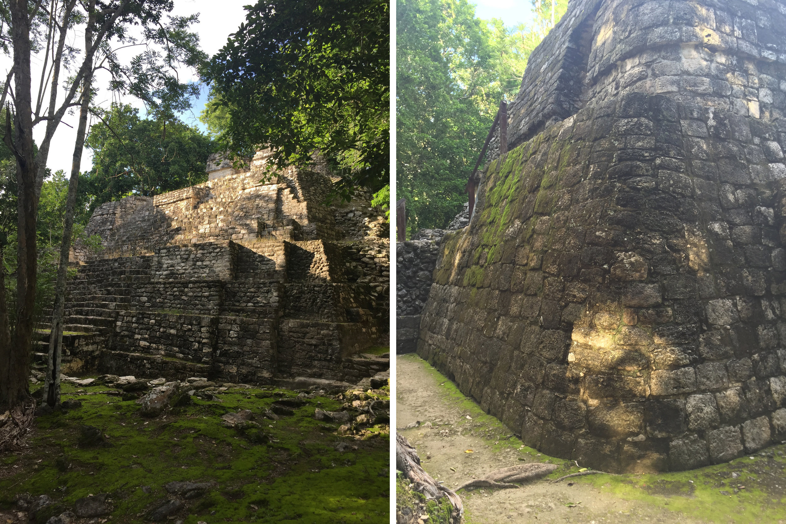 some of the structures at Balamku; the rounded walls are indicative of when the structure was built