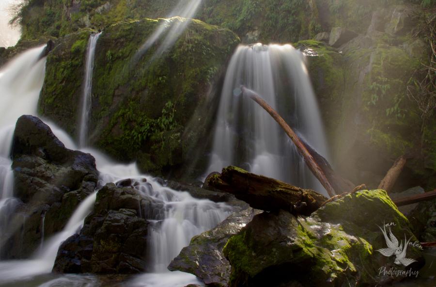 Lower Mashel Falls