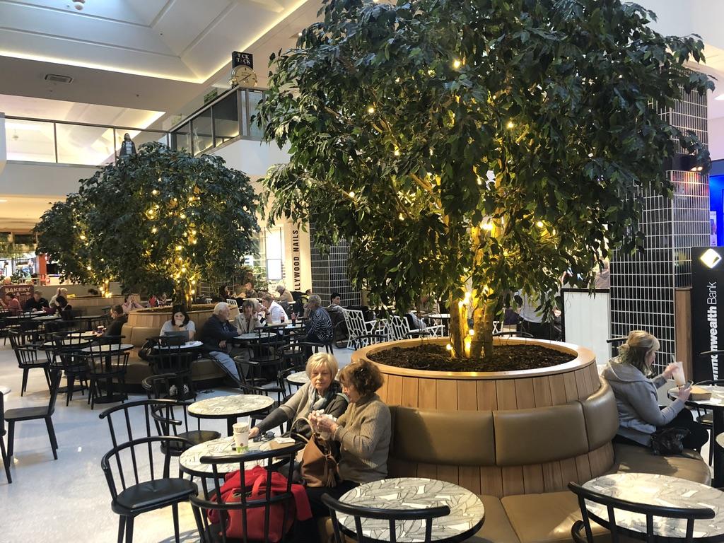 Large Indoor Trees at  Tea Tree Plaza  - South Australia
