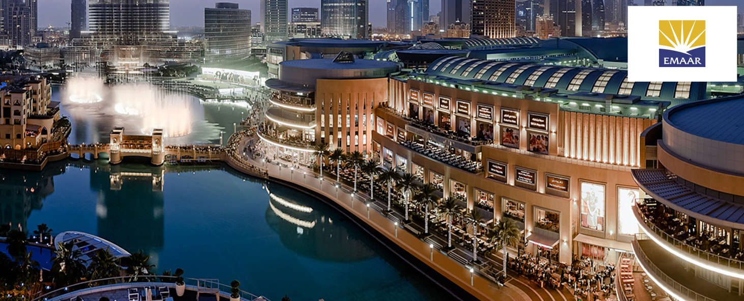 Website banners - dubai mall.jpg