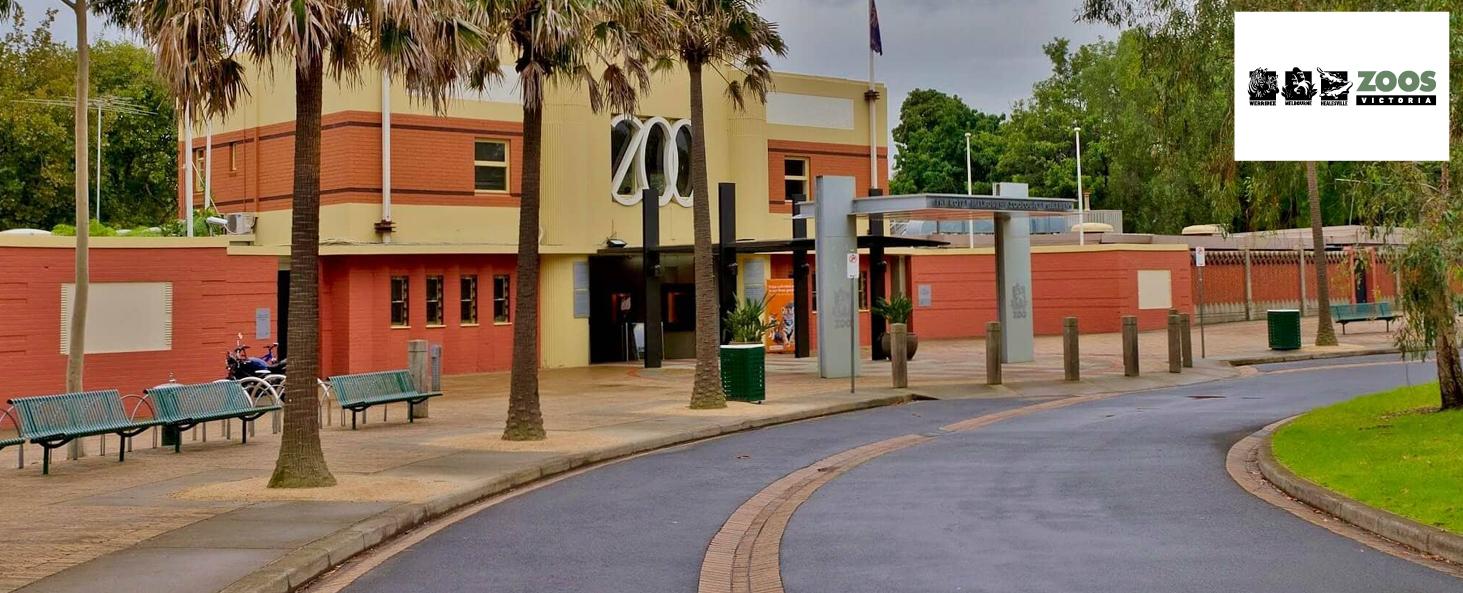 Website banners - Zoos Victoria.jpg