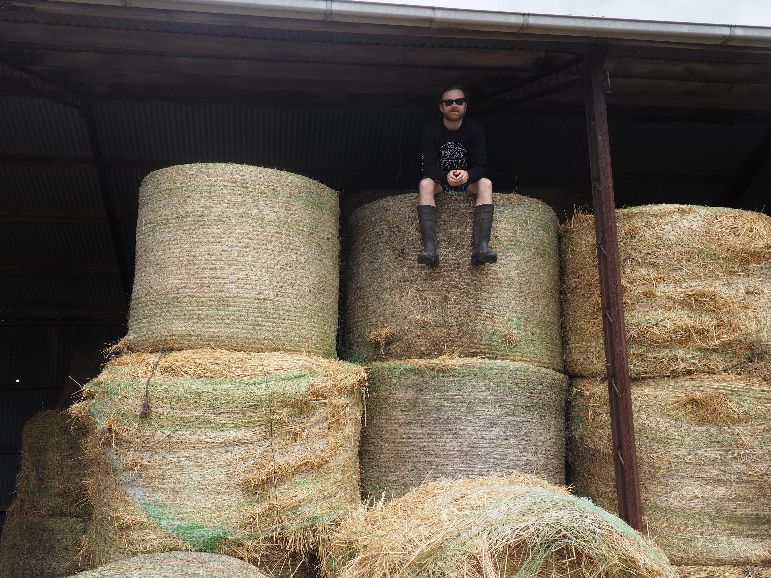Bimbadeen5 - lawson hay stack.JPG