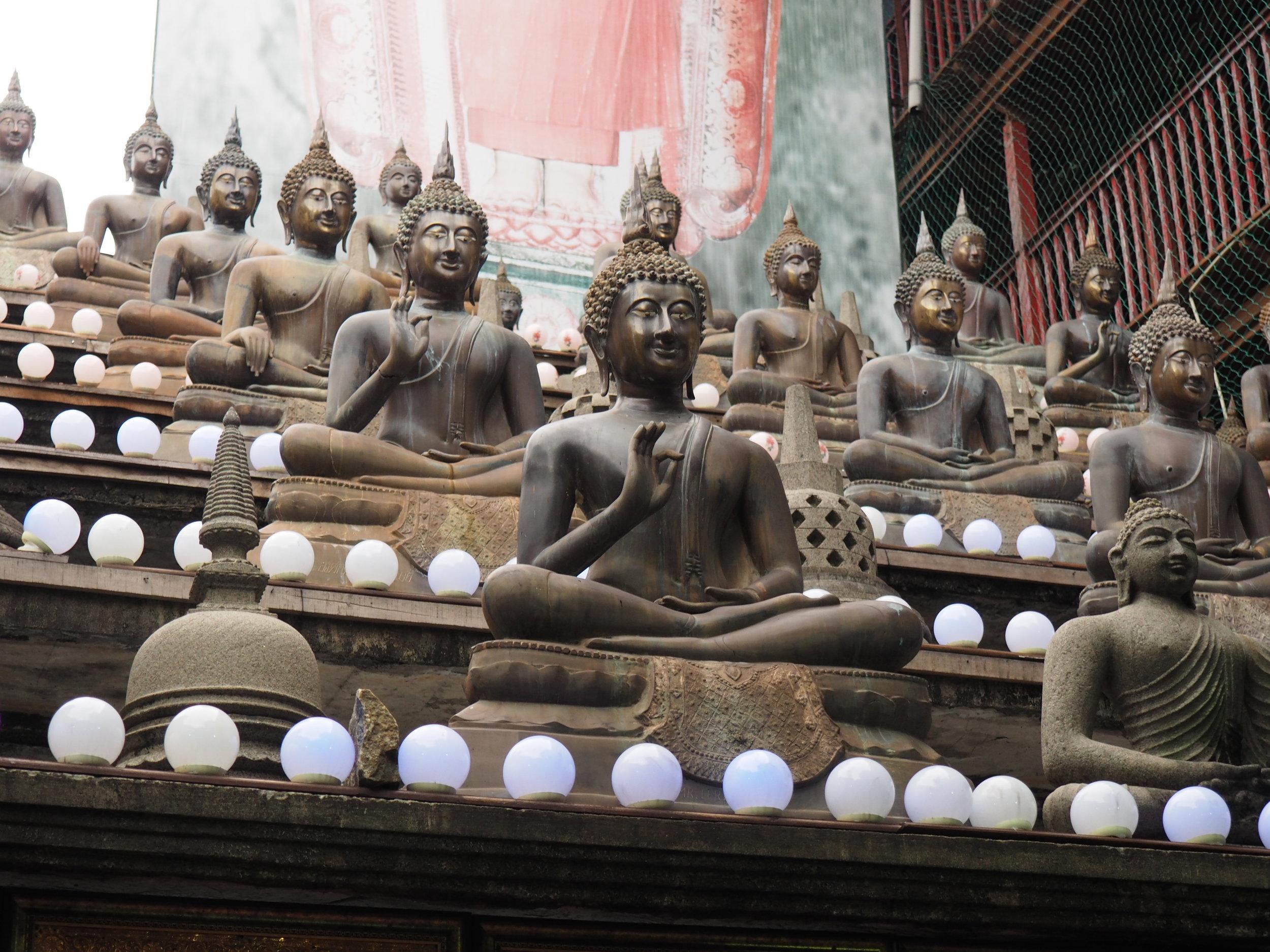 Gangaramaya  rows of buddhas.JPG
