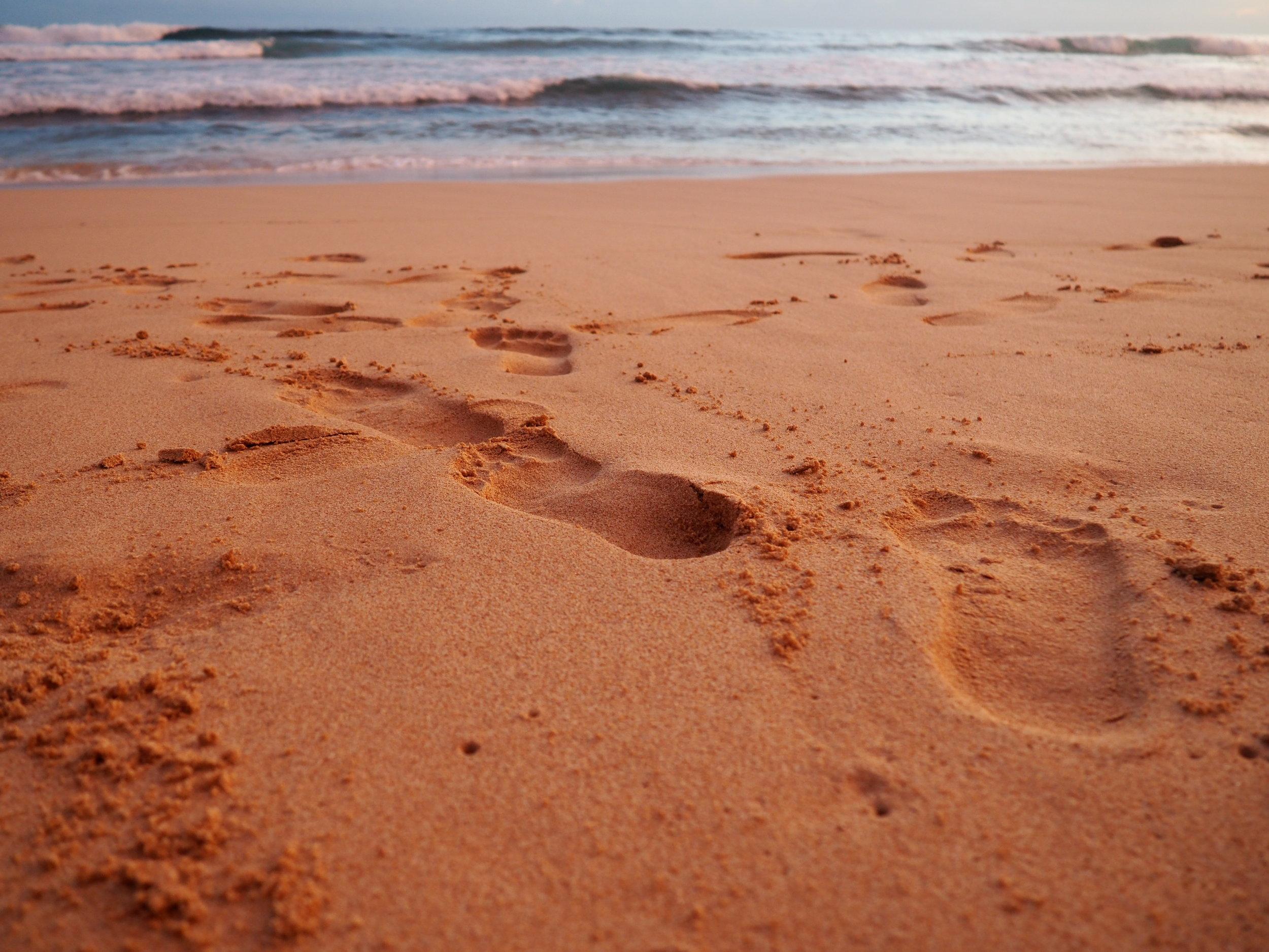 Fortress footprints.JPG