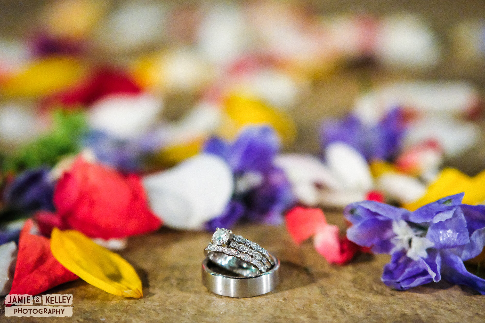 JK_ArinAndIsrael_WeddingTeasers_SprucedUp-05.jpg