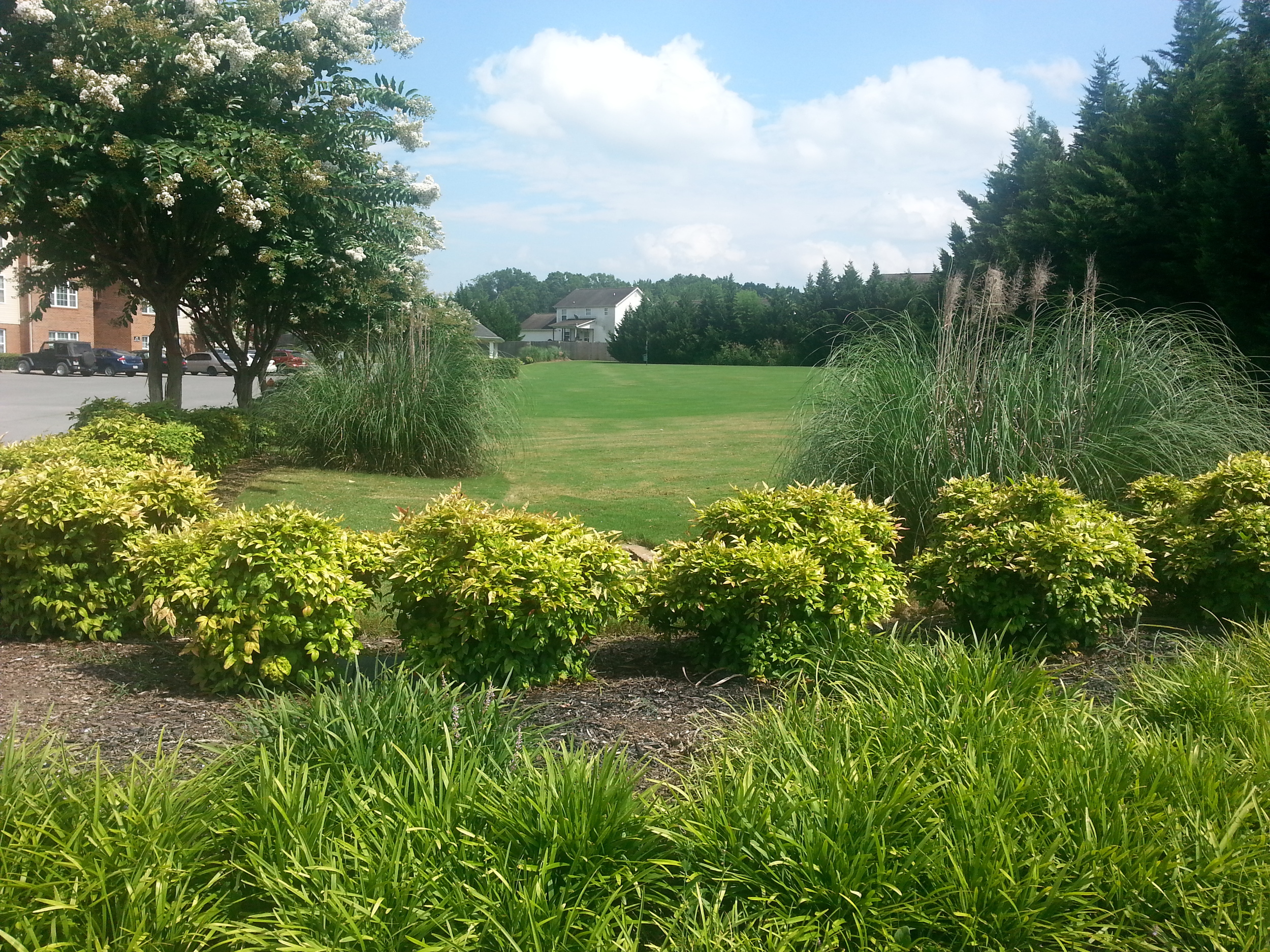 grounds view.jpg
