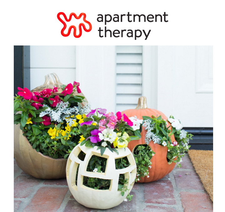 apartment-therapy-casey-brodley.jpg