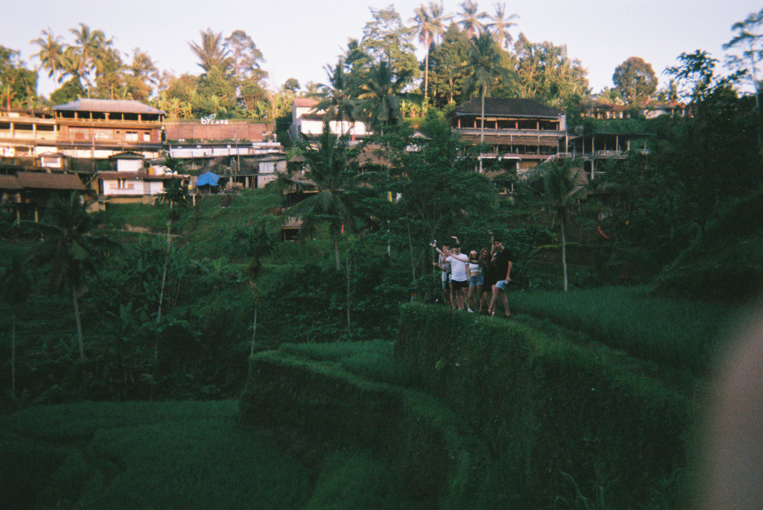 DISPOSABLE DIARIES - BALI, INDONESIA