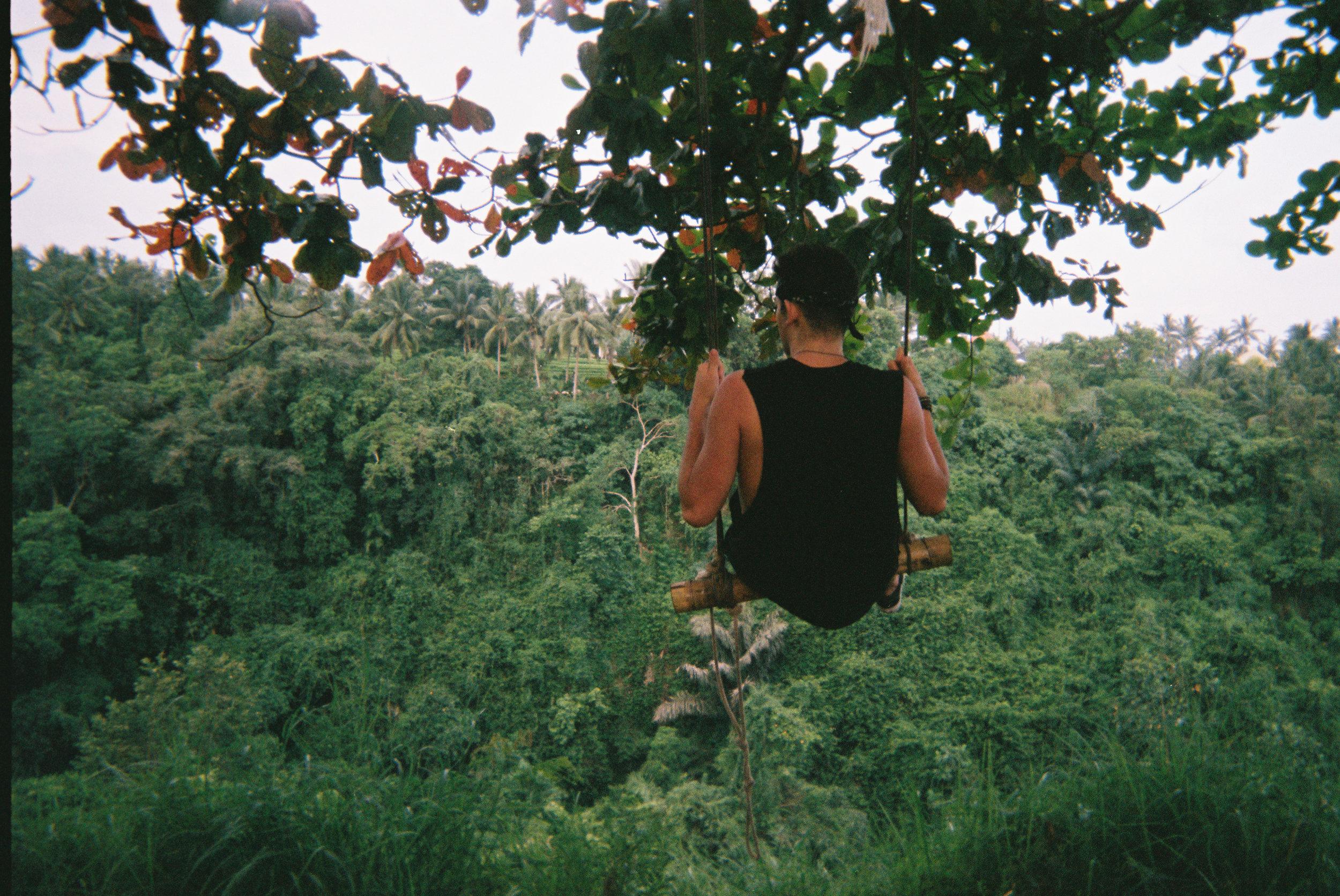 A lil jungle boy on a lil jungle swing