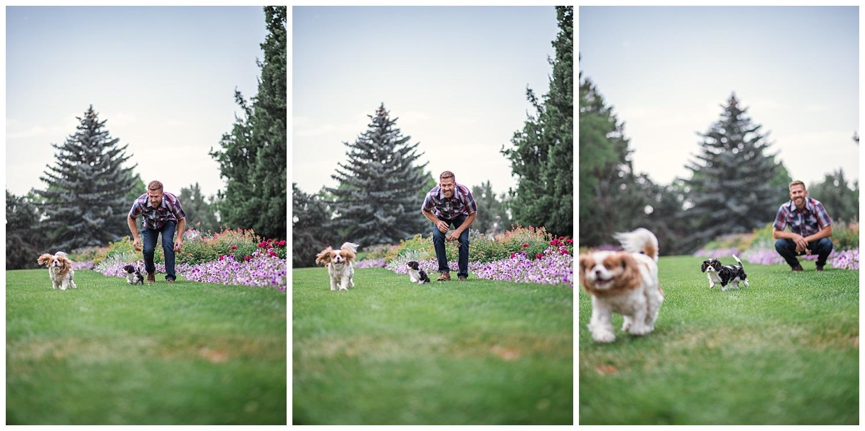 Denver Photographer, Colorado Photographer, Denver Family Photographer, Colorado Family Photographer, Cheesman Park, New Puppy, Denver Puppy, Colorado Wedding Photographer