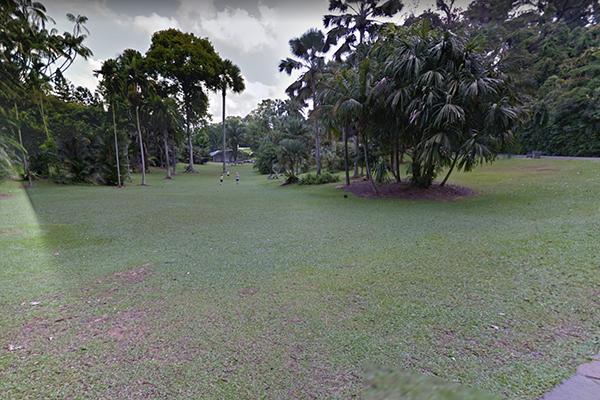 Palm-Valley.jpg