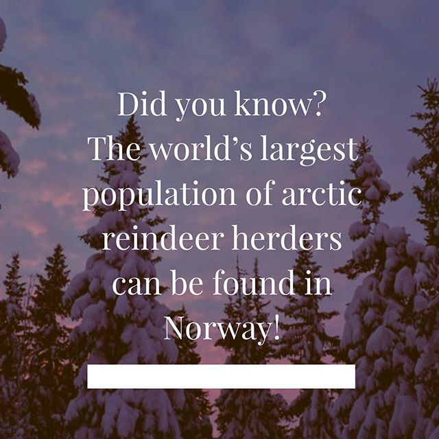 Did you know..? . . . . . .  #scandinavian #festival #scandinavianfestival #brisbane #queensland #stalls #denmark #norway #sweden #finland #iceland #scandifest #food #drinks #scandinavianfestivalbrisbane #fun #familyfriendly #funfact #facts