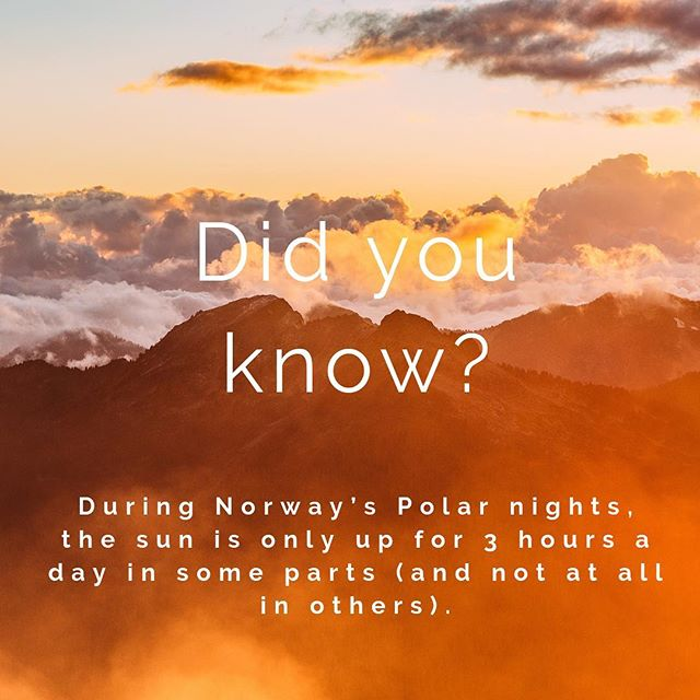Here's an interesting fact about Norway to start your week! . . . . . . . . #brisbane #localbrisbane #visitbrisbane #scandinavianfestival #scandifest18 #food #brunch #scandinavianstyle #fact #monday