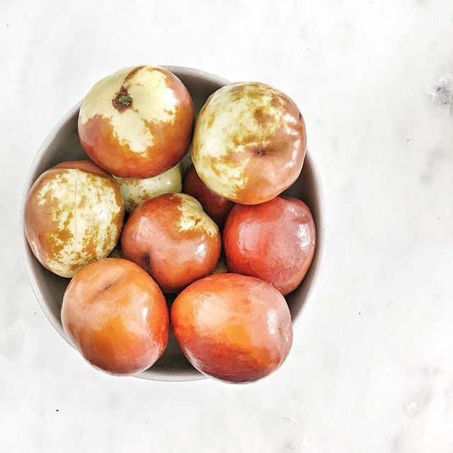 Have you ever had this cute little fruit😍? It's a jujube and the texture and taste is somewhat similar to apples🍎. In traditional Chinese medicine, jujubes are used to treat #insomnia and reduce #anxiety 💫. They are also packed with nutrients such as Vitamin C (only two jujubes have more than your daily dose of Vit C🙌🏼!!) and lots of potassium. . . I love snacking on jujubes, or having them in my #overnightoats and #morningsmoothies 😋. Check out my latest IGTV 📺 episode where I talk all about jujubes and all the other fun seasonal stuff I get at my local farmers market👩🏻🌾! . . Do you have a favorite rare fruit👇🏻? . . #rarefruits #newfoods #foodfacts #jujube #healthyfoods #farmersmarket #localfoods #californiagrown #ilovela #culvercity #culvercityfarmersmarket #vitaminc #superfoods