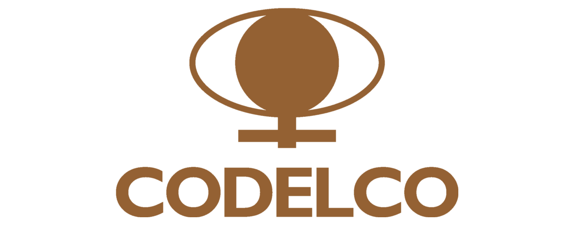 Codelco-precisa-información.png