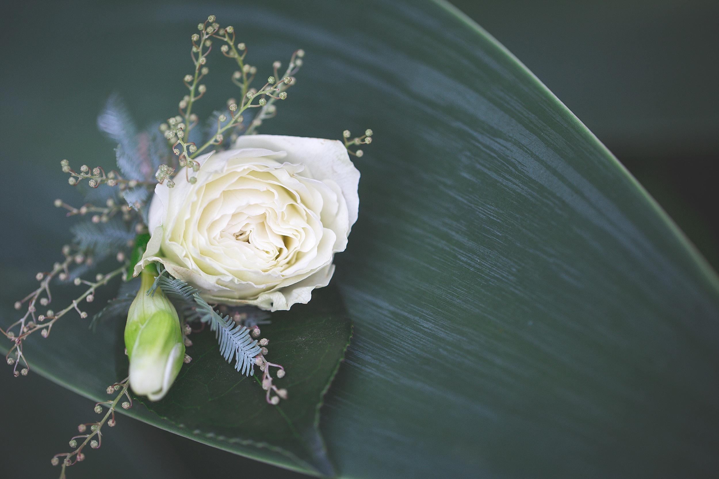 Adelaiade Wedding Photographer - pardon my french photography 79.jpg