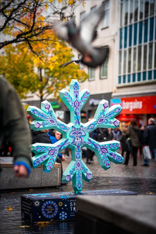 liverpool_snowflake_trail-14.jpg