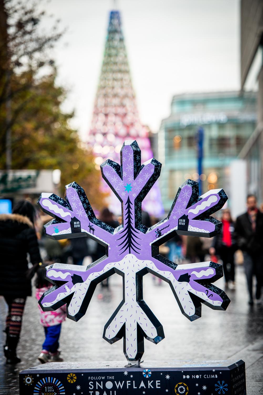 liverpool_snowflake_trail-17.jpg