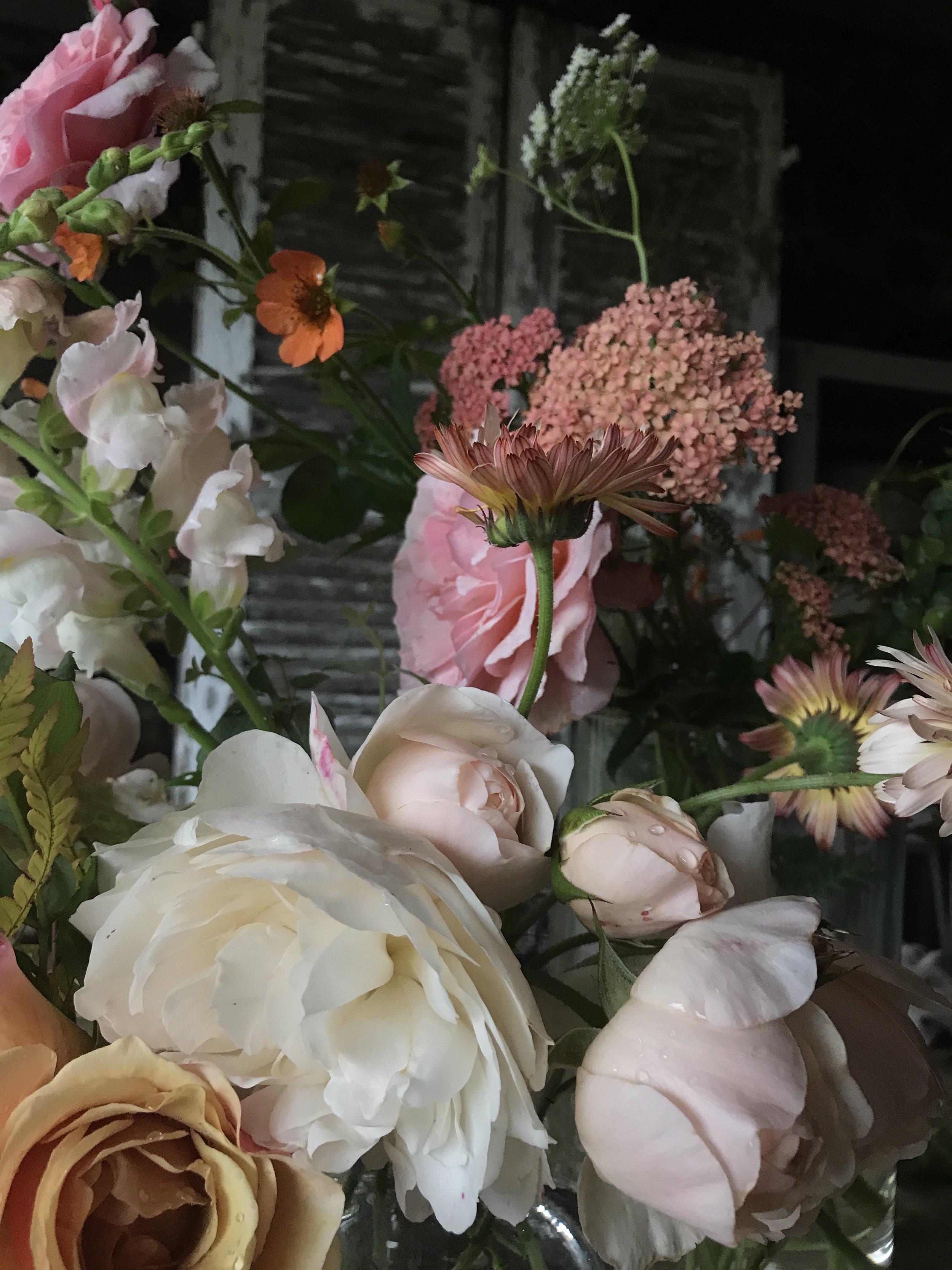 garden flowers freshly picked