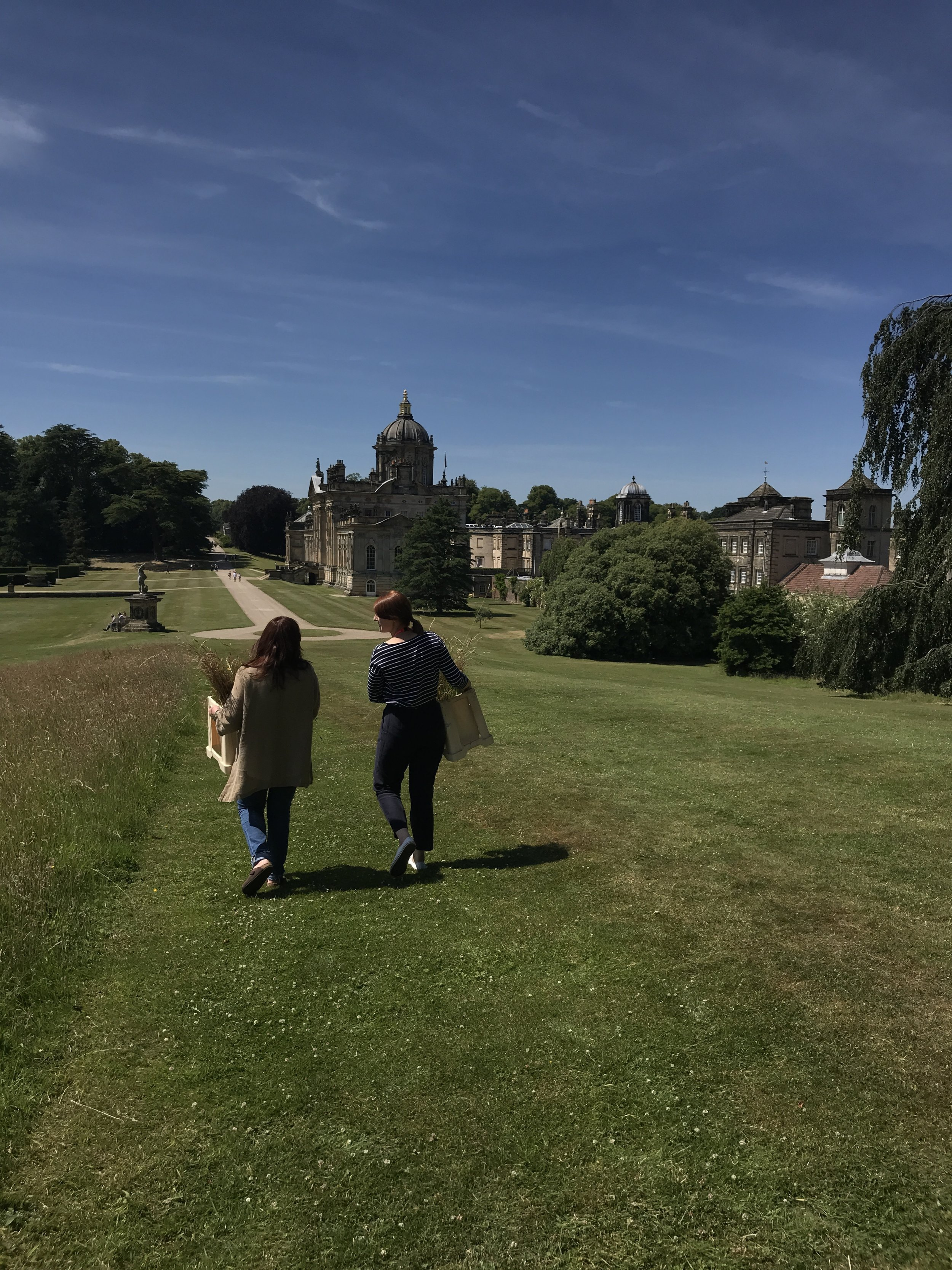 Picking from the grounds of Castle Howard