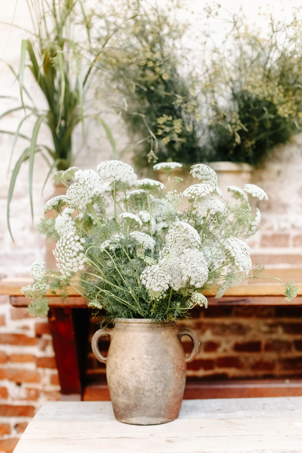 rustic container with ammi Image Belle and Beau