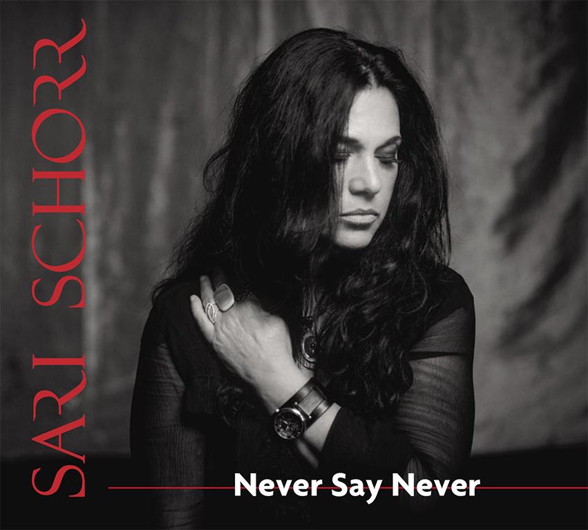 SariSchorr NSN Cover--WEB.jpg