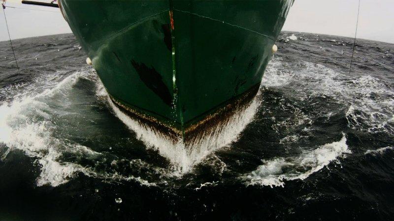 Leviathan_Dogwoof_Documentary_1_800_450_85.jpg