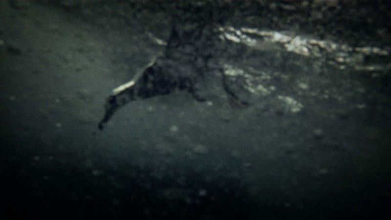Leviathan_Dogwoof_Documentary_5_800_450_85.jpg
