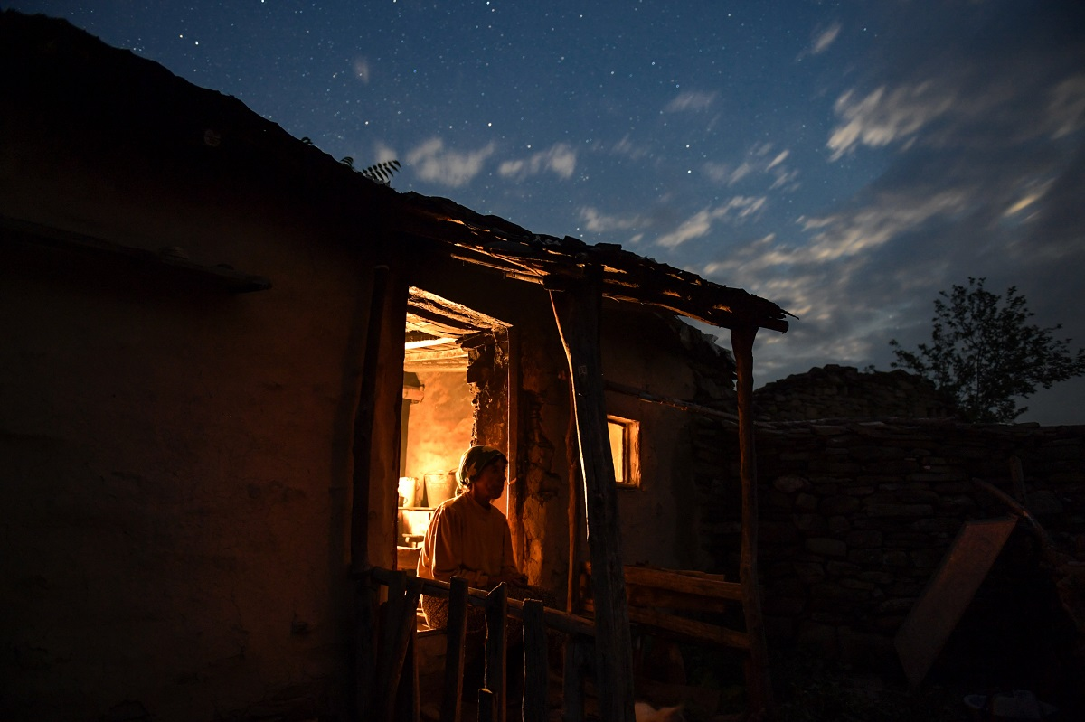 night honeyland.jpg