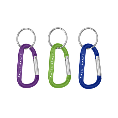 8MM Carabiner with Split Ring 300
