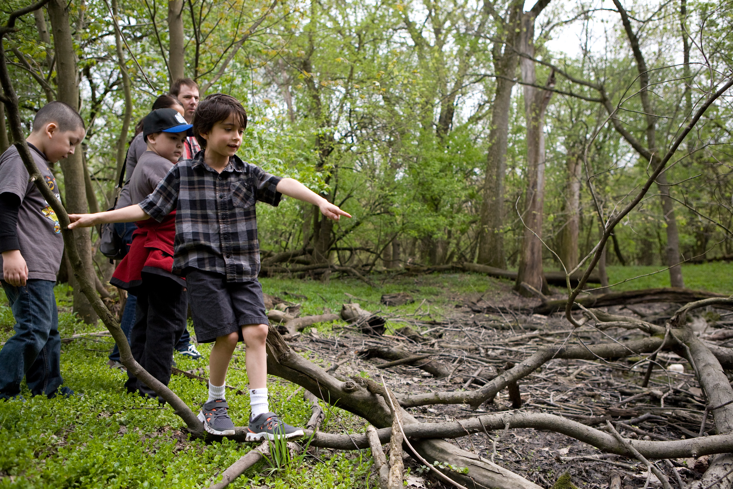 Forest Preserve of Cook County Camping Master Plan