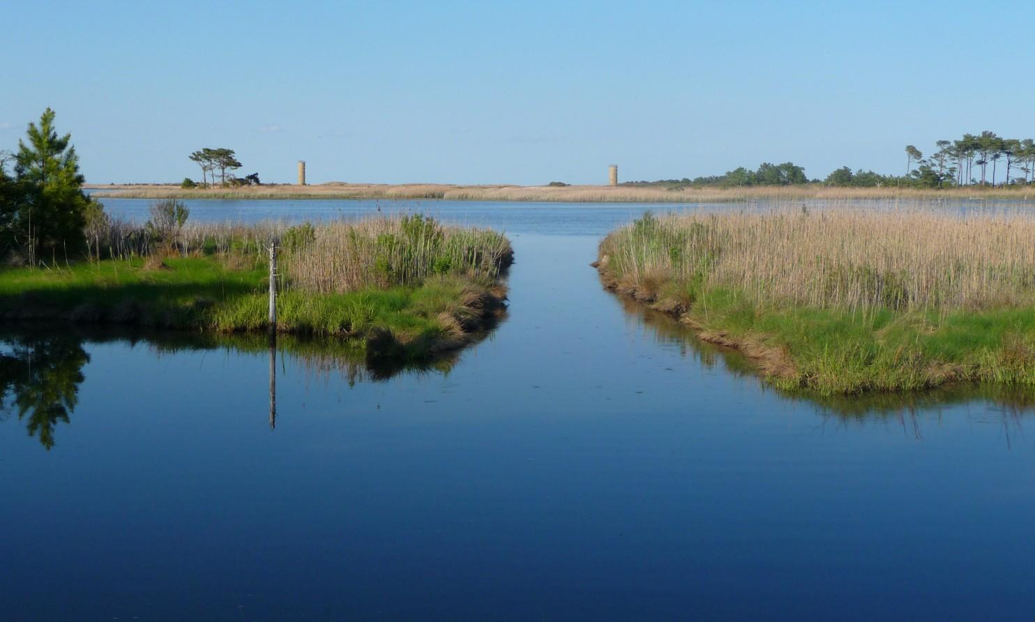 Gordon's Pond