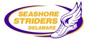 seashore striders.png