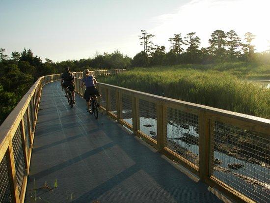 Gordon's Pond Bike Trail