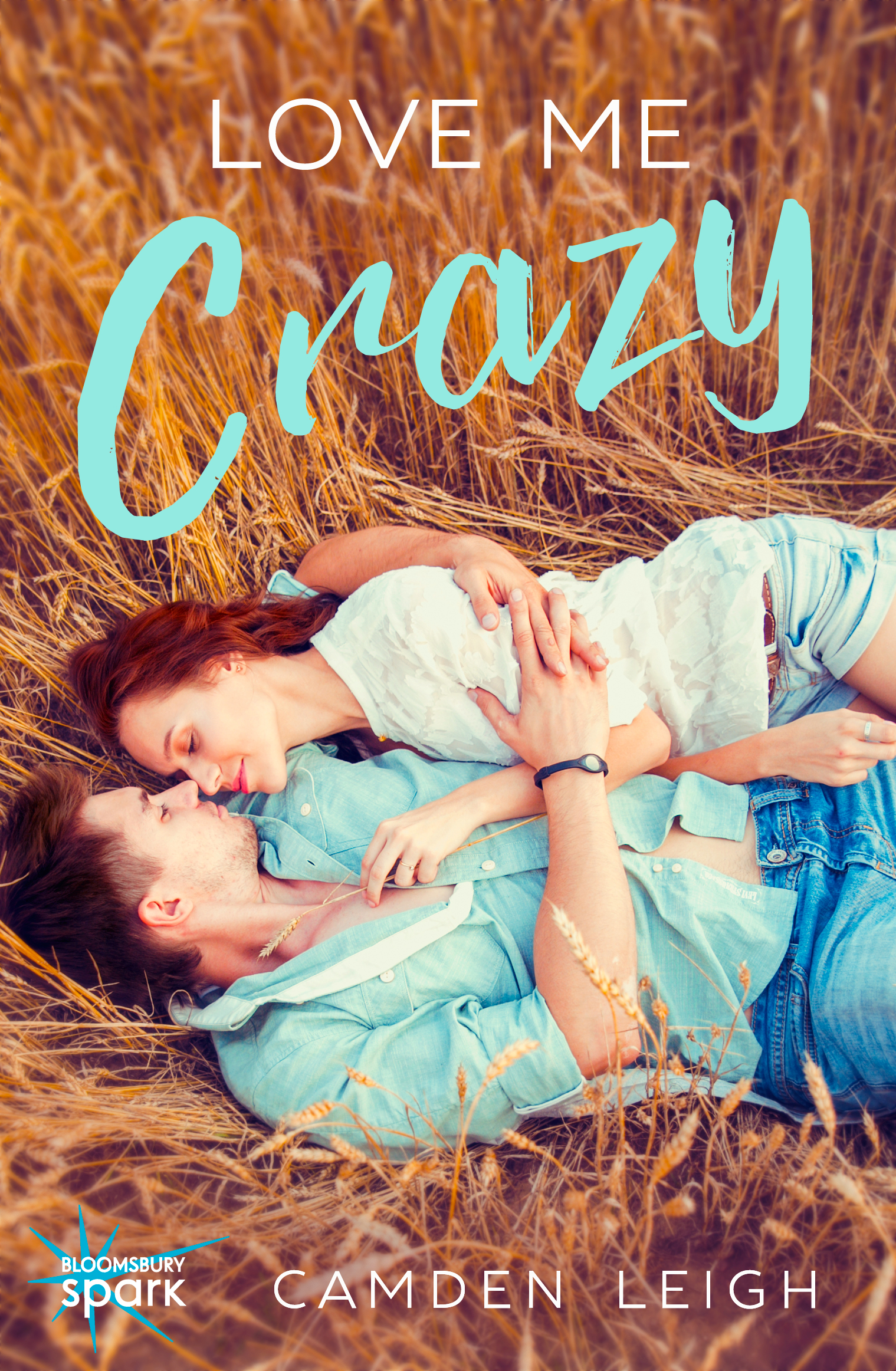 Love Me Crazy Camden Leigh New Adult Contemporary Romance Cover Southern love
