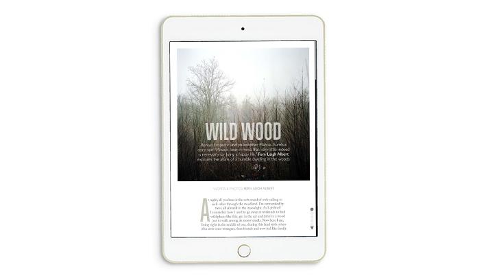 Ernest_iPad_slides5.jpg