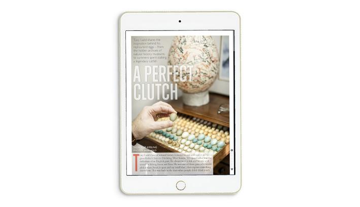 Ernest_iPad_slides6.jpg