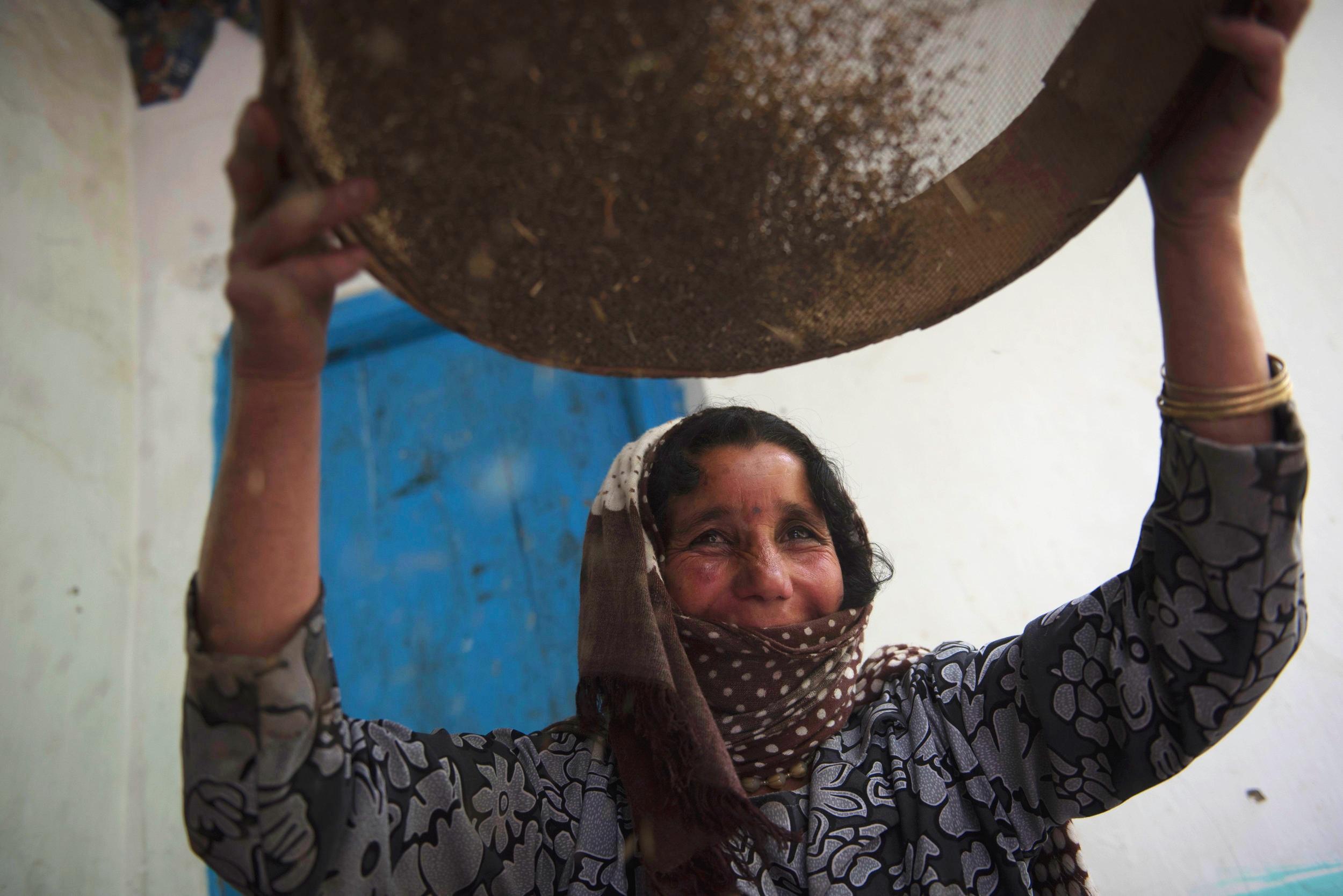 AFghan seed woman3.jpg
