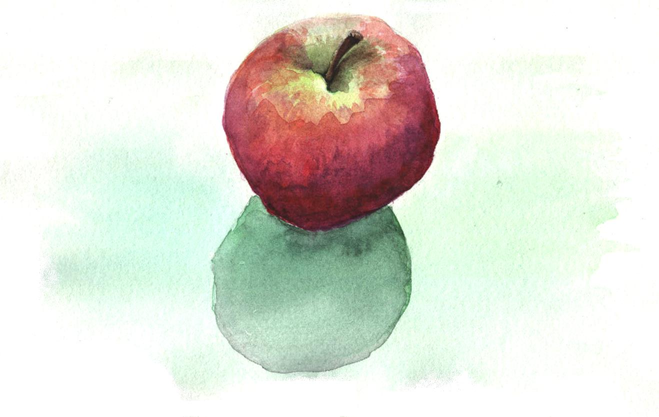 Apple   Watercolour on paper