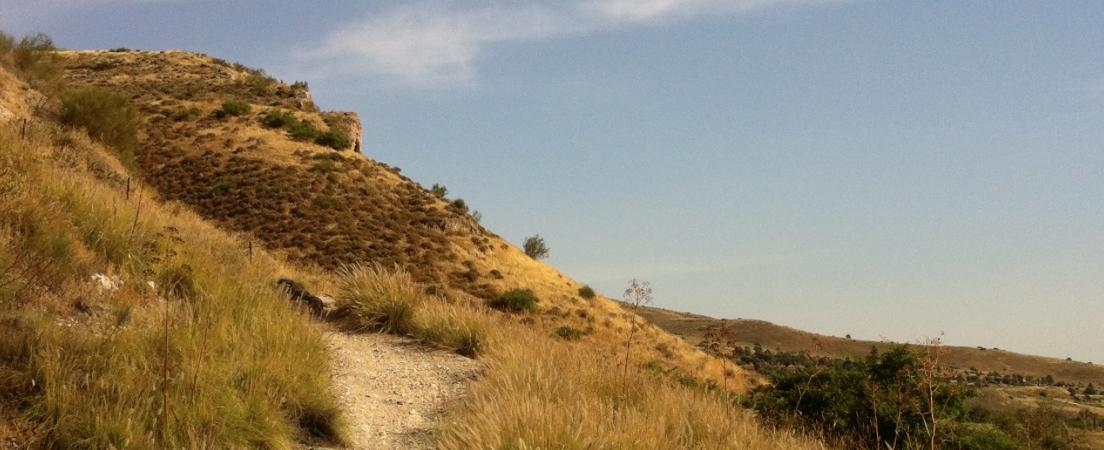 Galilean hillside