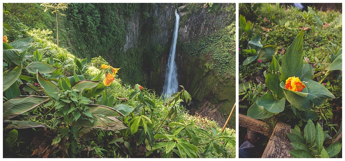Catarata del Toro Waterfall Photos Manuel Antonio Photos_1470.jpg