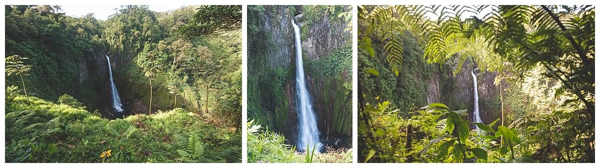 Catarata del Toro Waterfall Photos Manuel Antonio Photos_1469.jpg