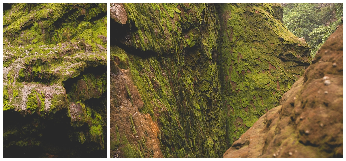 Catarata del Toro Waterfall Photos Manuel Antonio Photos_1486.jpg
