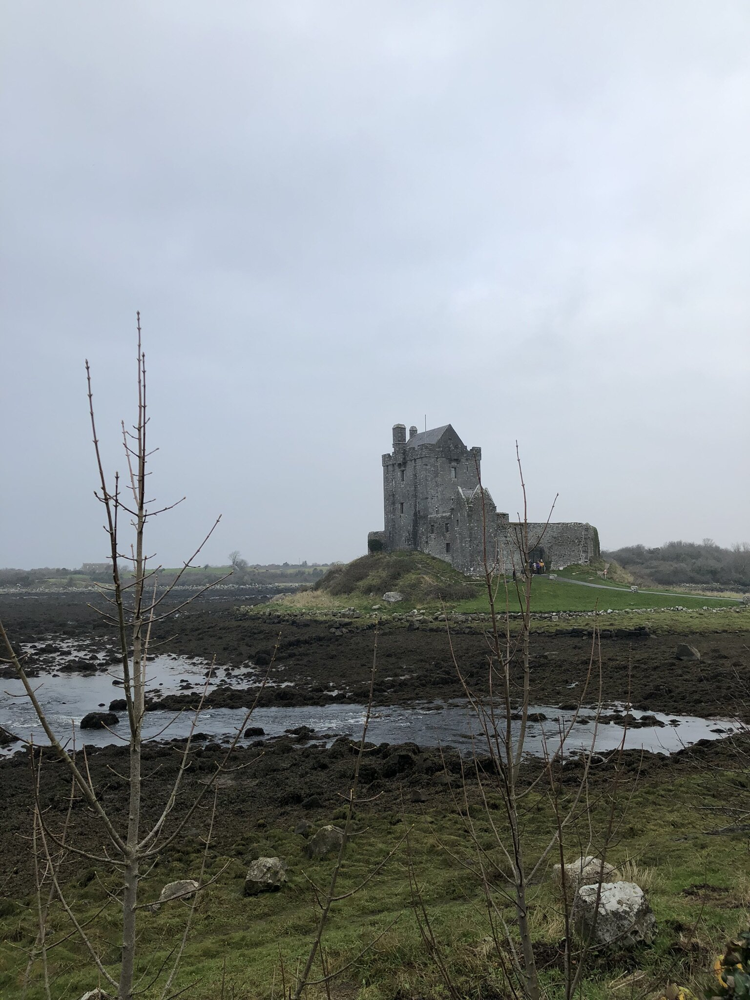Dunguire castle in Kinvara, Ireland