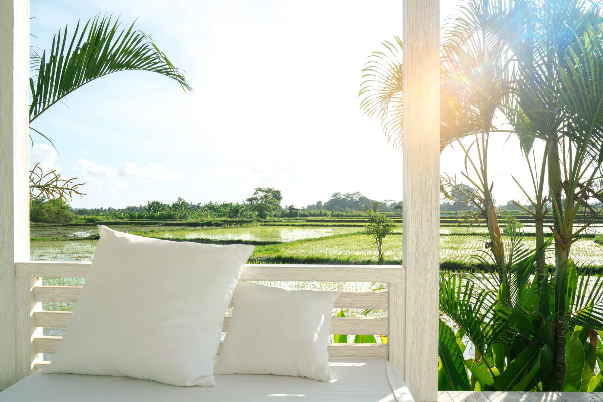 Bali Rice Field Villa | Never Settle Travel