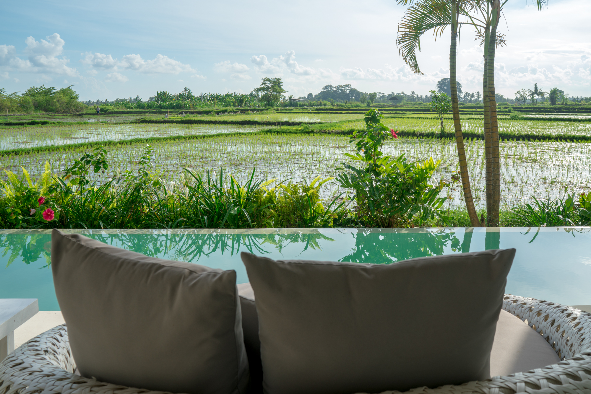 Ubud Rice Field Villa | Never Settle Travel