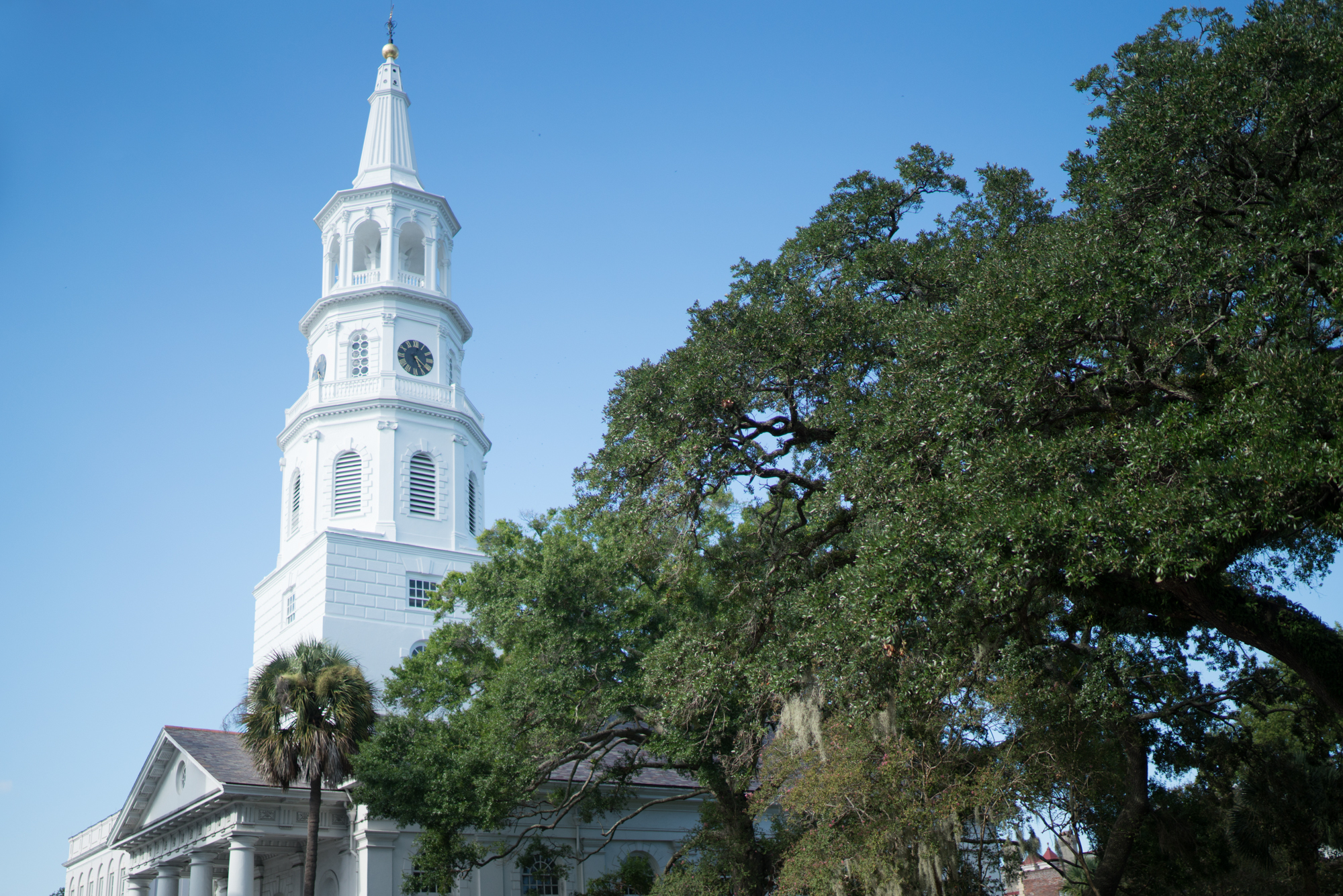 Charleston, South Carolina | Never Settle Travel