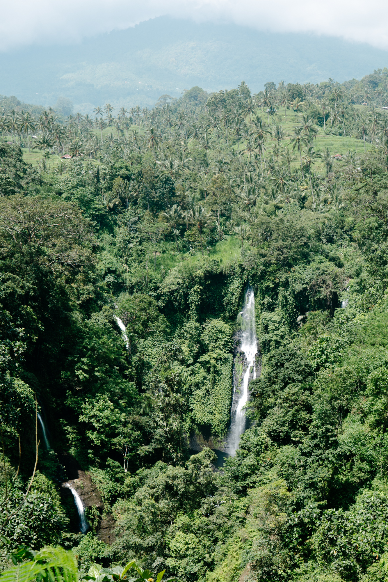 Best Hikes in Bali, Indonesia | Never Settle Travel